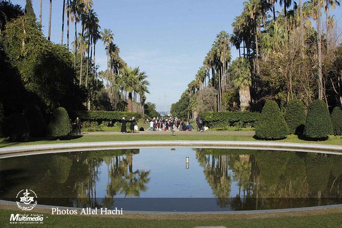 صورة صور.. حديقة الحامة رئة البهجة وملاذ زوارها