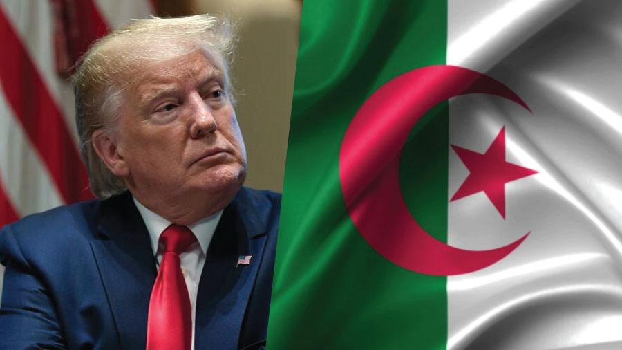 صورة سياسة ترامب التخوفية و علاقتها بالأدمغة الجزائرية