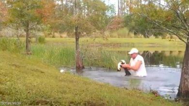 صورة فيديو لعملية إنقاذ بطولية.. يحرر جروا من فكّي تمساح