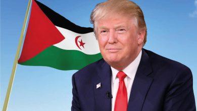 صورة رسالة من أمريكا: ترامب لا يعرف عن نزاع الصحراء الغربية.. ومع ذلك أعطى لنفسه الحق بأن يقرر