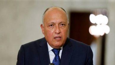 """صورة القاهرة: قدمنا طلبا لمجلس الأمن بعقد جلسة حول """"سد النهضة"""""""
