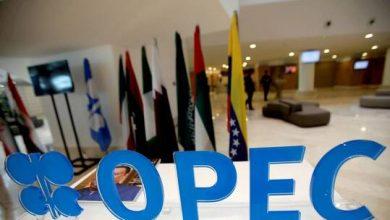 """صورة ترجيح عقد لقاء وزاري لـ""""أوبك+"""" غدا الأحد"""