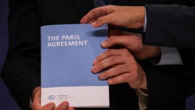 صورة البنك الأوروبي لإعادة الإعمار والتنمية يوائم أنشطته مع إتفاقية باريس للمناخ
