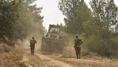 صورة وحدات الجيش الوطني الشعبي تتدخل لإخماد النيران في المناطق الغابية بخنشلة  بالناحية العسكرية الخامسة