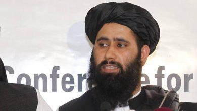 """صورة طالبان: تنظيم """"القاعدة"""" غير موجود في أفغانستان"""