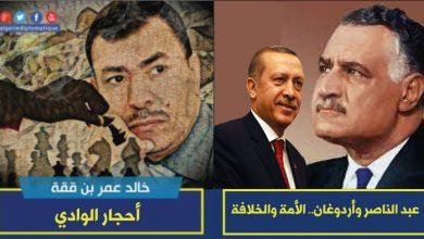 صورة عبد الناصر وأردوغان.. الأمَّة والخلافة