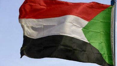 صورة يحملون جنسية عربية.. موقع سوداني ينشر أسماء الإرهابيين الذين قتلوا رجال المخابرات في جبرة