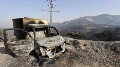 صورة الجزائر.. توقيف 8 متهمين بافتعال الحرائق كانوا على اتصال بفرحات مهني