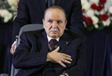 صورة بوتفليقة سيواري الثرى اليوم بمربع الشهداء