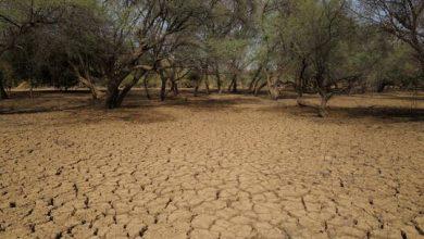 صورة خبراء: أزمة المناخ تهدد بتوجيه ضربة قاسية لبلدان الشرق الأوسط الغنية بالنفط