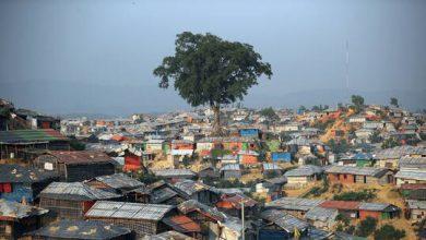 """صورة بنغلاديش تشترك في """"خطة ازدهار المناخ"""" في قمة المناخ"""